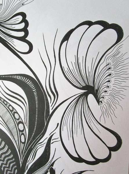 Drawing - Organza Bloom by Rosita Larsson