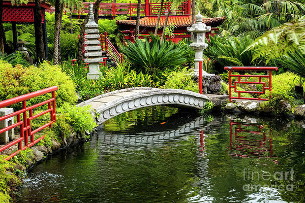Photograph - Oriental Bridge In A Tropical Garden by Brenda Kean