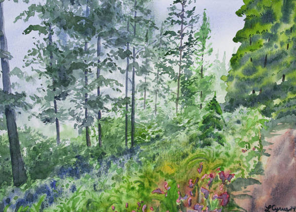 Painting - Original Watercolor - Summer Pine Forest by Cascade Colors