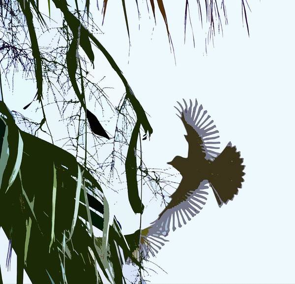 Palm Frond Digital Art - Orioles Abstract 2 by Linda Brody