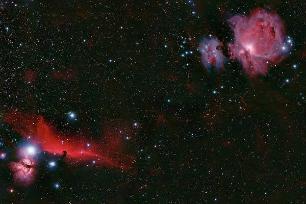 Photograph - Orion Complex  by Dale J Martin