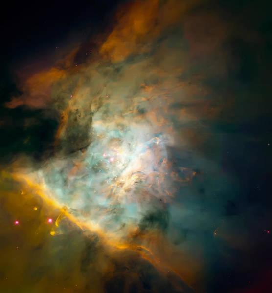 Wall Art - Photograph - Orion Nebula Mosaic  by Jennifer Rondinelli Reilly - Fine Art Photography