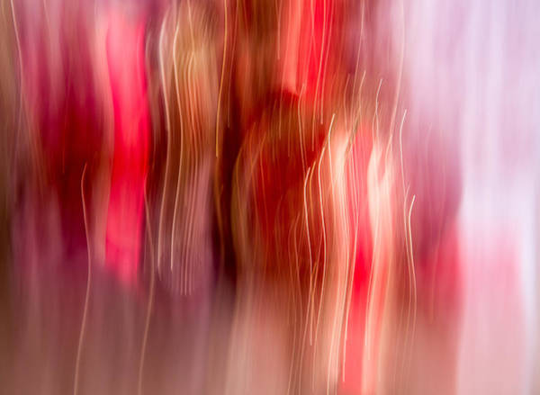 Wall Art - Photograph - Ornament Abstract 5 by Rebecca Cozart