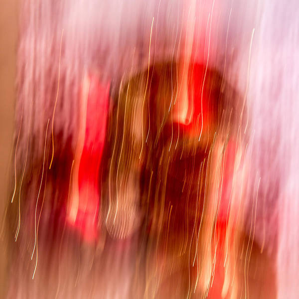 Wall Art - Photograph - Ornament Abstract 6 by Rebecca Cozart