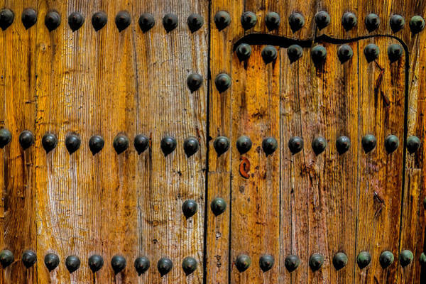 Wall Art - Photograph - Ornamental Door by Garry Gay