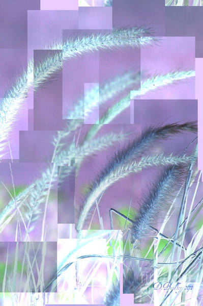 Photograph - Ornamental Grass by Donna Bentley