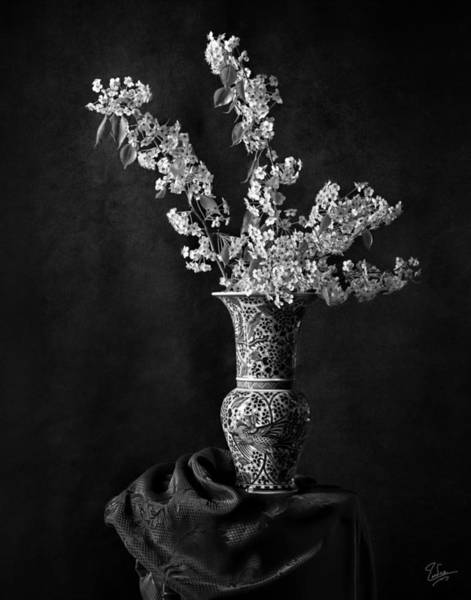 Photograph - Ornamental Pear Blossoms B And W by Endre Balogh