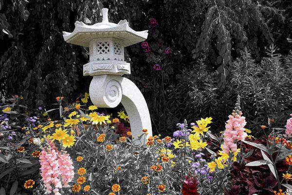 Photograph - Ornamental Zen by Dylan Punke