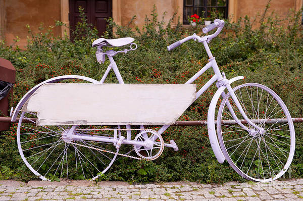 Wall Art - Photograph - Ornate Lavender Color Painted Cycle by Arletta Cwalina