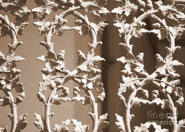 Photograph - Ornate Railing In Sepia by Carol Groenen