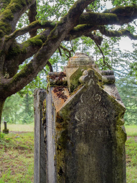 Photograph - Ornate Resting Place by Jean Noren