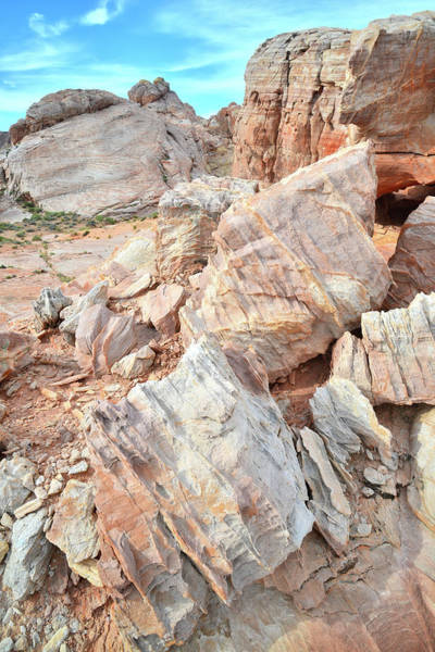 Photograph - Ornate Sandstone In Valley Of Fire by Ray Mathis