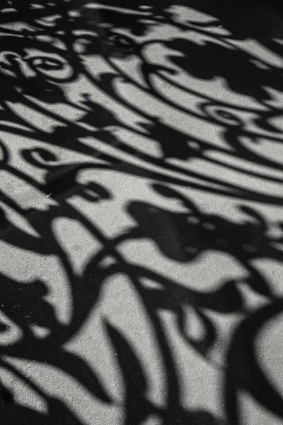 Photograph - Ornate Shadows by KG Thienemann