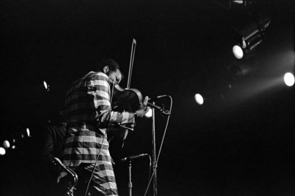 Photograph - Ornette Coleman On Violin by Lee Santa