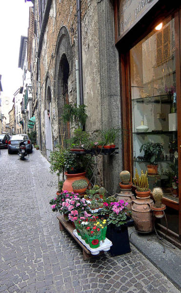 Wall Art - Photograph - Orvieto Italy Flower Shop by Mindy Newman