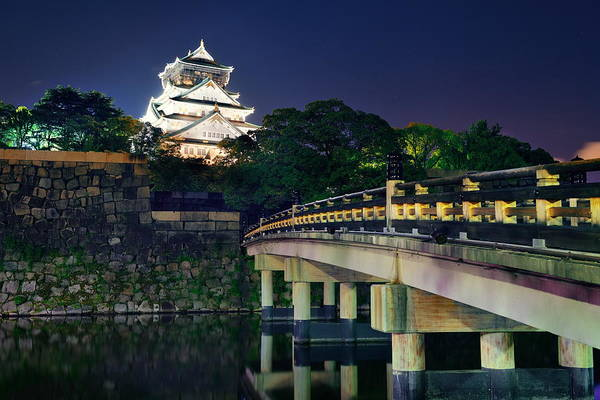 Wall Art - Photograph - Osaka Castle by Songquan Deng