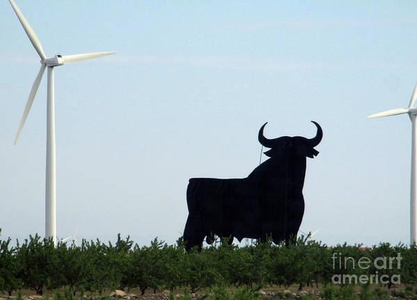 El Toro Photograph - Osborne Bull 3 by Randall Weidner
