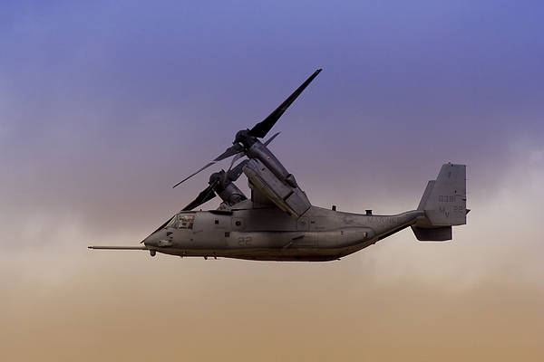 Rotor Photograph - Osprey In Flight IIi by Ricky Barnard