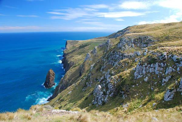 Photograph - Otago Peninsula Coastline by Cascade Colors