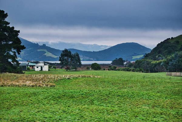 Photograph - Otago Peninsula I - New Zealand by Steven Ralser