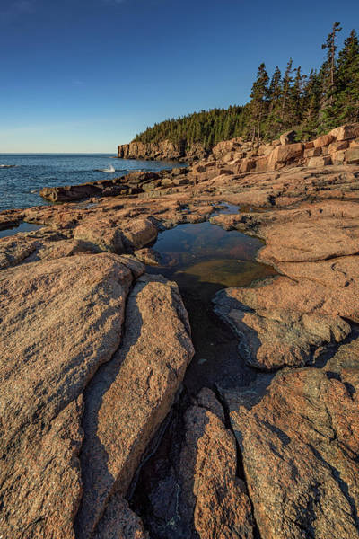 Photograph - Otter Cliff In The Distance by Rick Berk