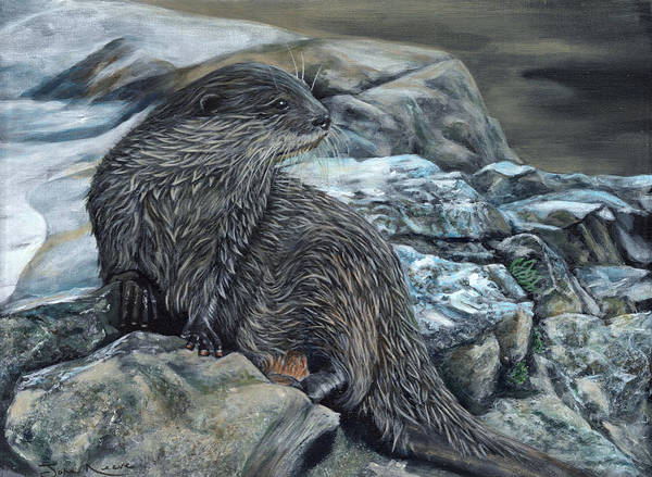 Painting - Otter On Rocks by John Neeve