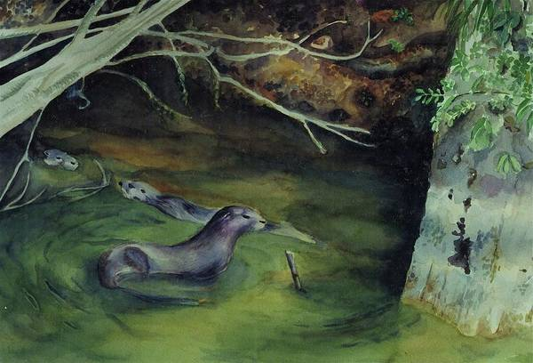 Wall Art - Painting - Otters In Dora Passage by Judy Swerlick