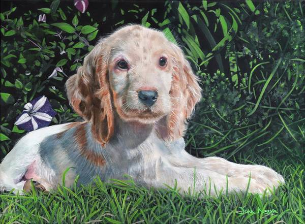 Painting - Our Archie by John Neeve