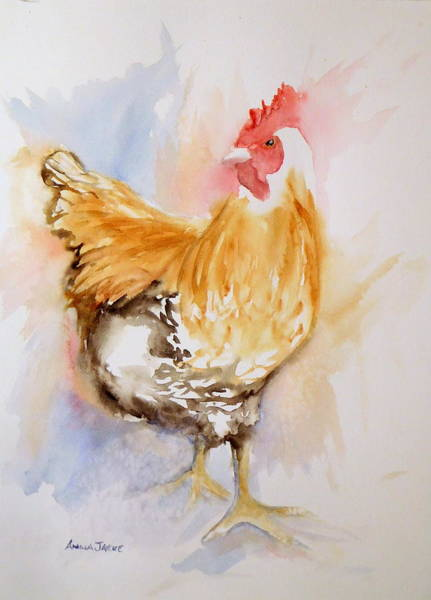 Painting - Our Buff Rooster  by Anna Jacke
