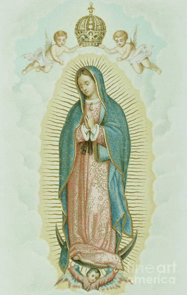 Madonna Drawing - Our Lady Of Guadalupe by French School