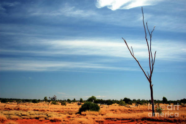 Photograph - Our Vivid And Colourful Outback by Vicki Ferrari