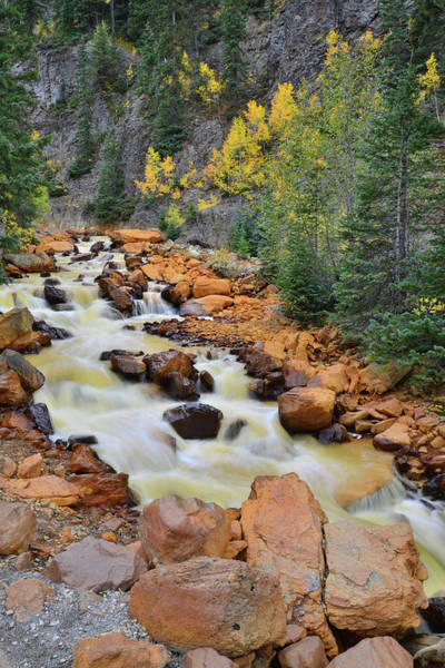 Photograph - Ouray Canyon Cascade by Ray Mathis