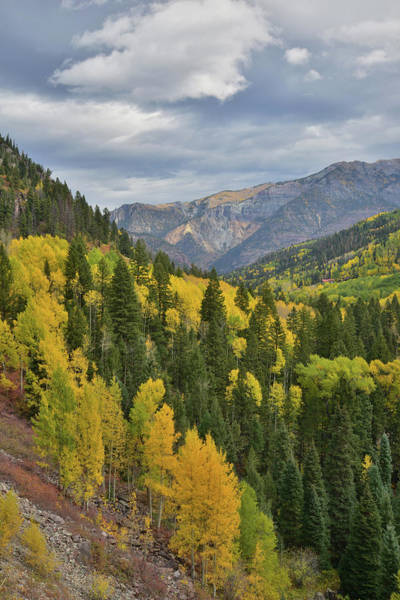 Photograph - Ouray Canyon From Bird Mine by Ray Mathis