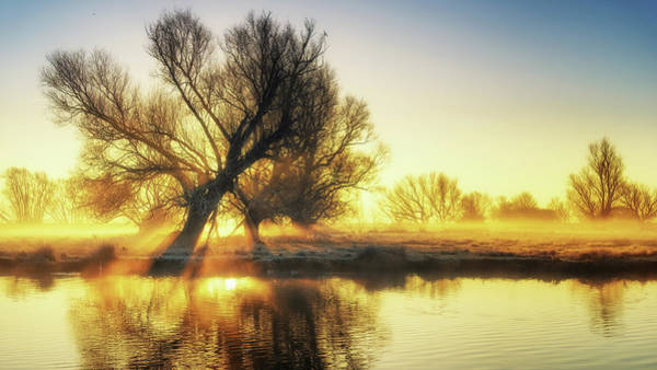 Photograph - Ouse Dawn by James Billings