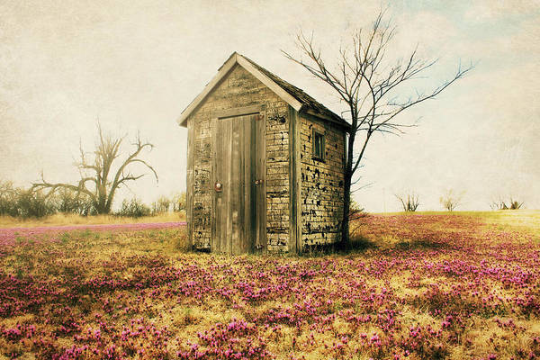 Photograph - Outhouse by Julie Hamilton