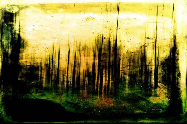 Photograph - Out Of Darkness by Randi Grace Nilsberg