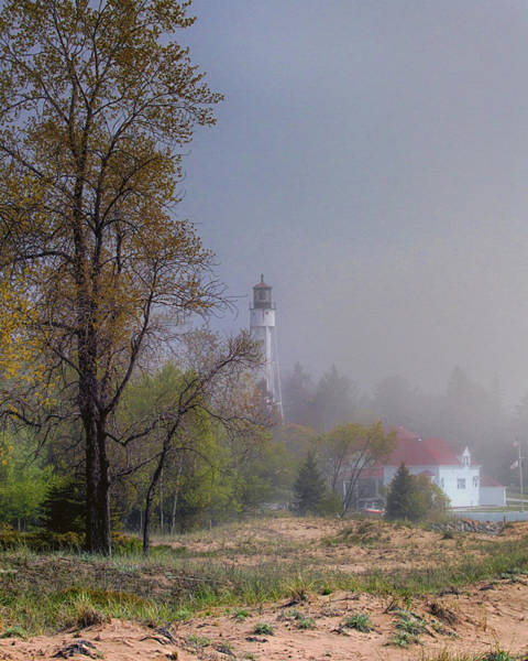 Photograph - Out Of The Fog by Susan Rissi Tregoning