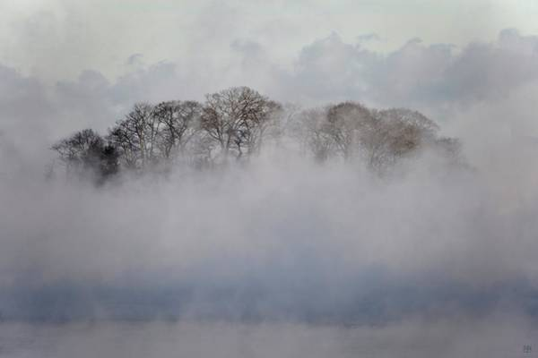 Photograph - Out Of The Mist by John Meader