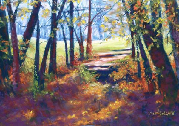 Colgate Wall Art - Pastel - Out Of The Shadows by Diana Colgate