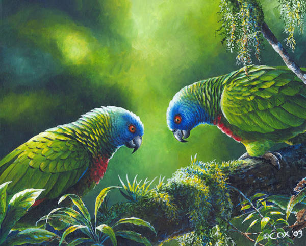 Painting - Out On A Limb - St. Lucia Parrots by Christopher Cox