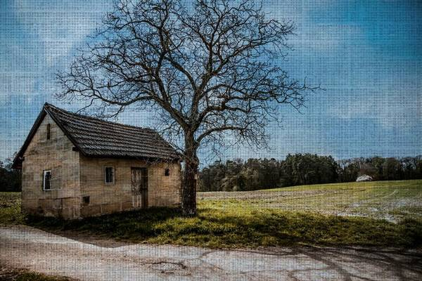 Photograph - Out On The Farm by Digital Art Cafe