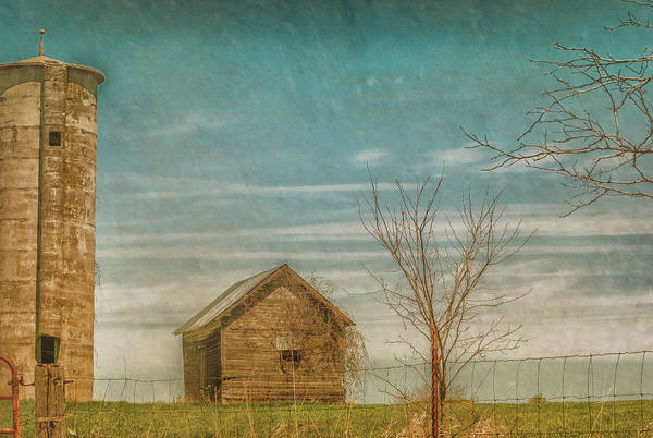 Photograph - Out On The Farm by Pamela Williams
