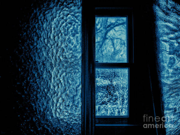 Photograph - Out The Bathroom Window by Jeff Breiman
