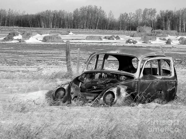 Volkswagen Kafer Photograph - Out To Pasture 001 Vw Bw by Jor Cop Images