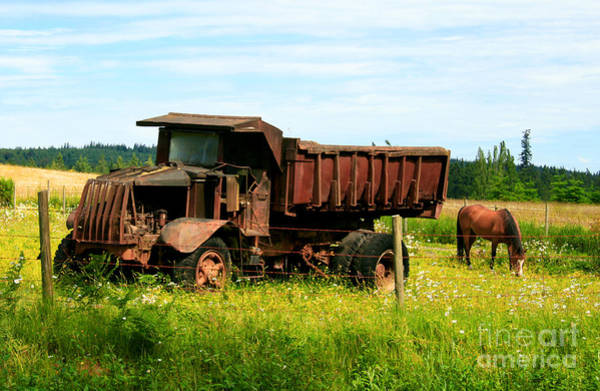 Dump Truck Photograph - Out To Pasture by Robert Nankervis