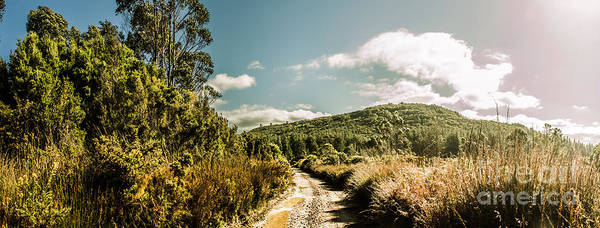 Wild Grass Photograph - Outback Country Road Panorama by Jorgo Photography - Wall Art Gallery