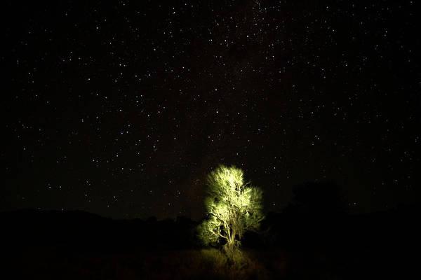 Photograph - Outback Light by Paul Svensen