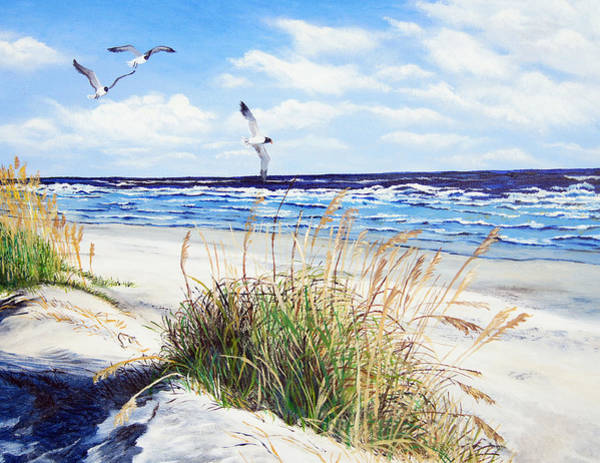 Gull Painting - Outer Banks by Pamela Nations