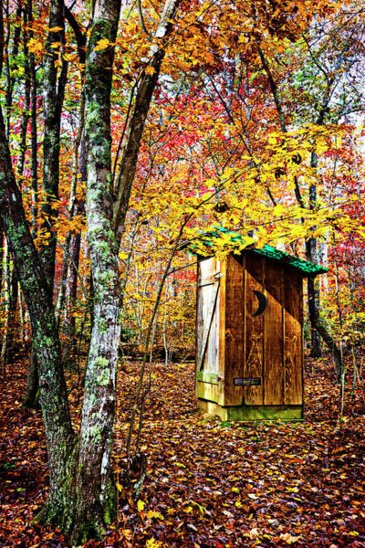 Wall Art - Photograph - Outhouse In The Forest by Debra and Dave Vanderlaan