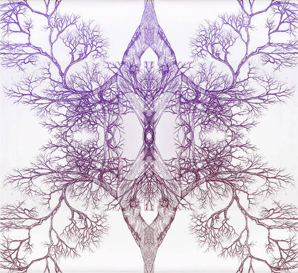Outward Tree 9 Hybrid 4 Art Print